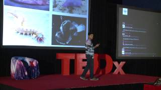 Download Impact of the discovery of intelligent alien life   Taher Kathawala   TEDxYouth@Winchester Video