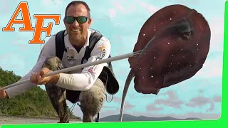 Download Hunting Octopus with spearing Stingray Catch and Cook ( ikan pari ) EP.408 Video