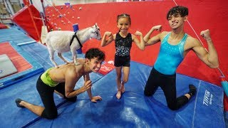 Download LITTLE SISTER vs. GOAT GYMNASTICS COMPETITION! Video