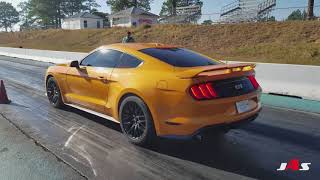 Download 2018 Mustangs at the track Video