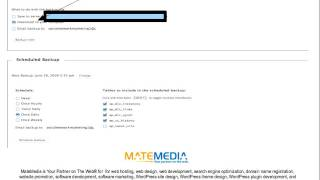 Download WordPress Backup Plugin Tutorial Video
