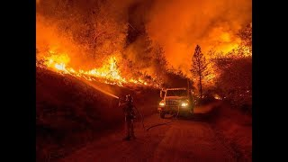 Download Wildfires California Live Video Footage - Trump Approves Major Disaster Declaration For California Video