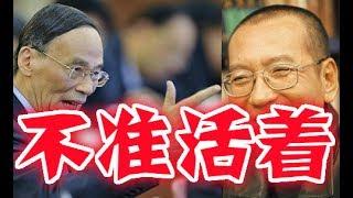 Download 劉曉波欲出國醫治、江胡習拍桌下令、決不能讓這廝活著出來! Video