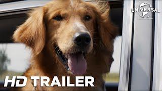Download Quatro Vidas de Um Cachorro - Trailer 1 Video