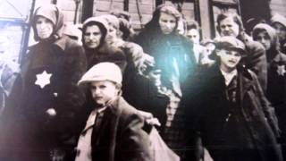 Download Bone Chilling Trip to Auschwitz Birkenau Concentration Camp Video