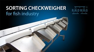 Download Sorting checkweigher for fish industry Video