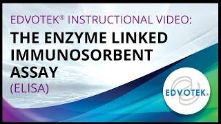 Download The Enzyme Linked Immunosorbent Assay (ELISA) Video