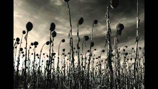 Download Dead Can Dance - Opium Video