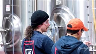 Download The Pico Brew brews craft beer with touch of a button Video