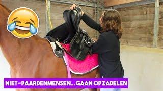 Download Niet-paardenmensen zadelen een paard op! | LeanneAbigail Video