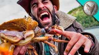 Download PINCHED by a HUGE CRAB! Video