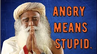 Download Sadhguru -next time you're angry - know you're stupid Video
