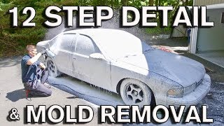 Download 12 Step Detail: Mold Removal and Plasti-Dip Repair for Used Car Sale: Impala SS Video