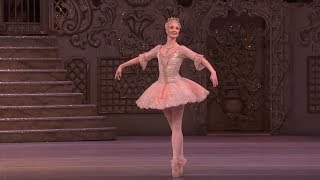 Download Dance of the Sugar Plum Fairy from The Nutcracker (The Royal Ballet) Video