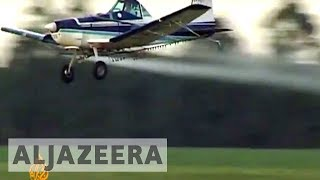 Download Argentinians link pesticides to illnesses Video