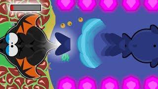 Download Mope.io BLUE WHALE KILLS BLACK DRAGON | Mope.io Epic Zebra Trolling | Mope.io Funny Moments Video