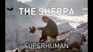 Download Real life X-men: Biology of the world's greatest climbers - the Sherpa Video