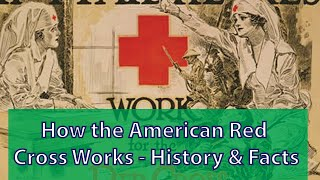 Download How the American Red Cross Works - History & Facts Video