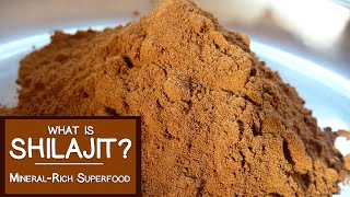 Download What is Shilajit? A Mineral-rich Superfood Adaptogen Video