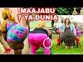 Download Mfahamu Mwanamke mwenye Matak... (hips&makalio)makubwa zaidi duniani Video