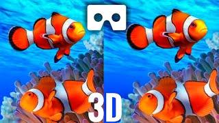 Download VR Videos 3D Aquarium VR Relaxation 3D VR 4K for Google Cardboar VR BOX 3D not 360 VR Video