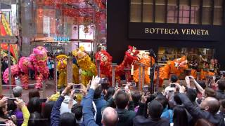 Download Hong Kong Chinese Lunar New Year 2017 - Lion Dance Performance @ Causeway Bay SOGO Video