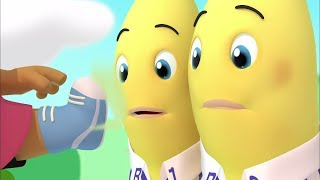 Download Morgan's Smelly Sneakers - Animated Episode - Bananas in Pyjamas Official Video