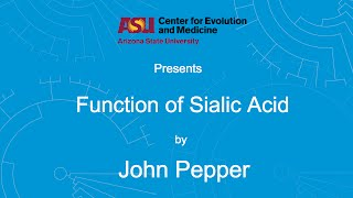Download Function of Sialic Acid | John Pepper Video