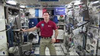 Download Space Station Crew Member Discusses Life in Space with French Media Video