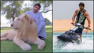 Download Crown Prince of Dubai - Lifestyle Video