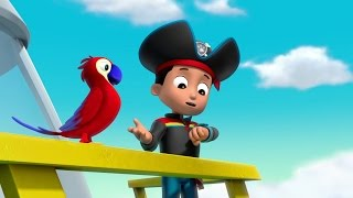 Download Sea Patrol: Pirate Pups to the Rescue Video