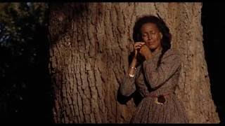 Download Daughters of the Dust - Official Trailer (HD) Video