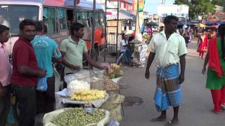 Download JAFFNA CITY STREETS Video