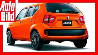 Download Suzuki Ignis (2016) - Comeback/Details Video