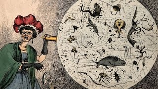 Download Germs, Genes and Genesis: The History of Infectious Disease - Professor Steve Jones Video