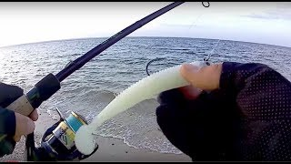 Download Striped Bass + Blue Fish on the Storm 360GT Searchbait - part 1 Video