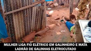Download Mulher liga fio elétrico em galinheiro e mata ladrão de galinhas eletrocutado Video