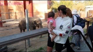 Download BABY'S FIRST TIME AT THE ZOO!!! Video