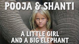 Download A Little Girl and A Big Elephant - Pooja & Shanti: Eine besondere Freundschaft Video