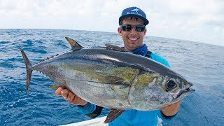 Download Fishing for Dinner Fish in Miami - 4K Video