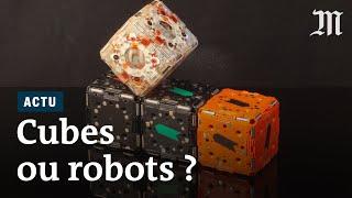 Download Pourquoi ces robots-cubes passionnent les ingénieurs de MIT Video