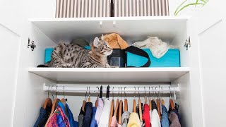 Download The Best Tips for Organizing Every Single Closet in Your House Video