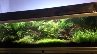 Download Paski LED w akwarium roślinnym cz.1 Video