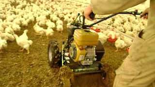 Download Removedor avícola ER73T Benza con tracción Video