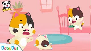 Download Why Did Baby Kitten Fall down | Big and Small Song | Kids Safety Tips | Number Counting Song|BabyBus Video