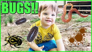 Download Kid Playing Outside In The Mud Making Mud Pies and Playing with Bugs Video