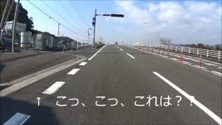 Download 高知市大津バイパス ネズミの強制サイン会に遭遇 Video