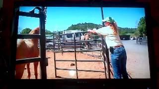 Download Dangerous Stallion.MP4 Video