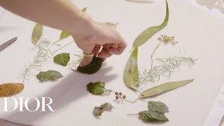 Download Eco-printing Savoir-Faire at the Dior Spring-Summer 2020 show Video