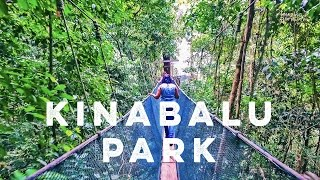 Download Amazing Borneo's Mount Kinabalu National Park & Poring Hot Springs Day Tour Video